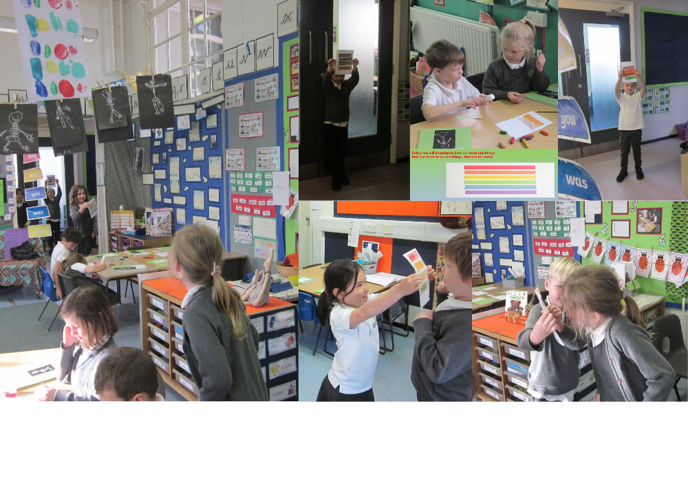 We used coloured strips to investigate the effect of distance and light variation on our sight.