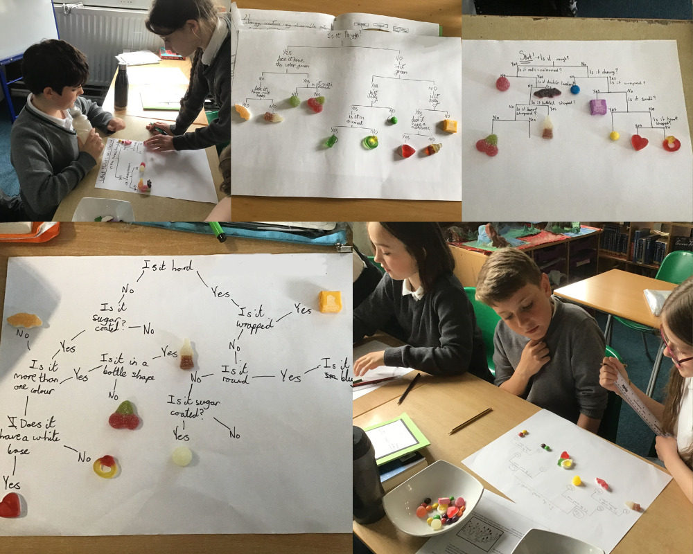 Using principles of classification sweets.