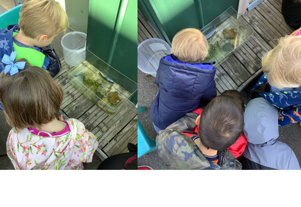 Intrigued by the frog spawn in the playground.