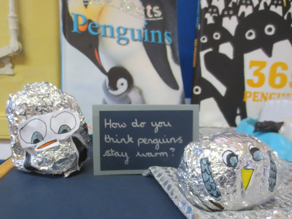 We investigated with hot potato penguins covered in different numbers of foil layers.