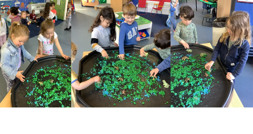 Our recreated pond in th classroom.