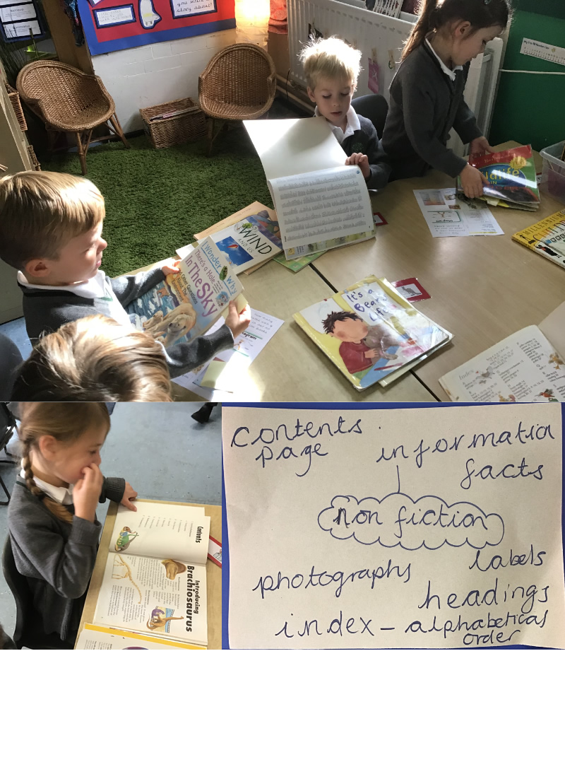 We looked at the features of information books.