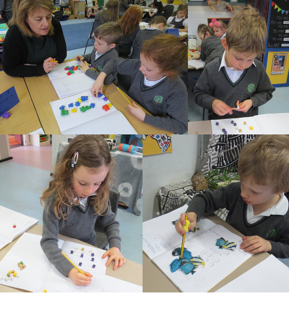 Dividing numbers into equal groups.