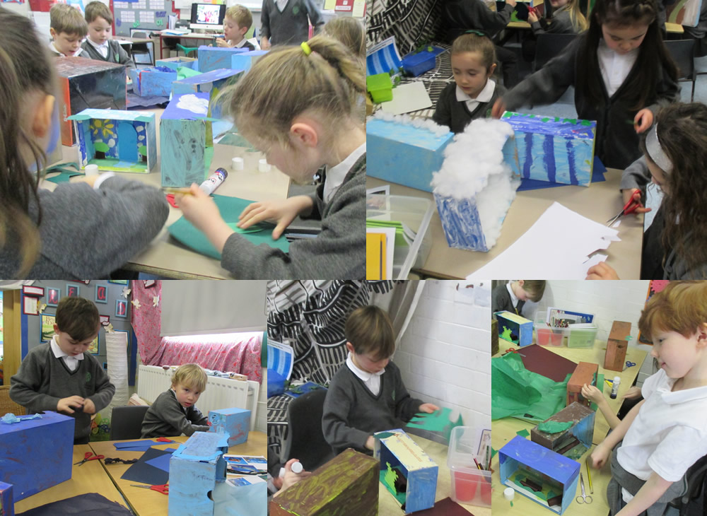 Making habitats in shoe boxes.