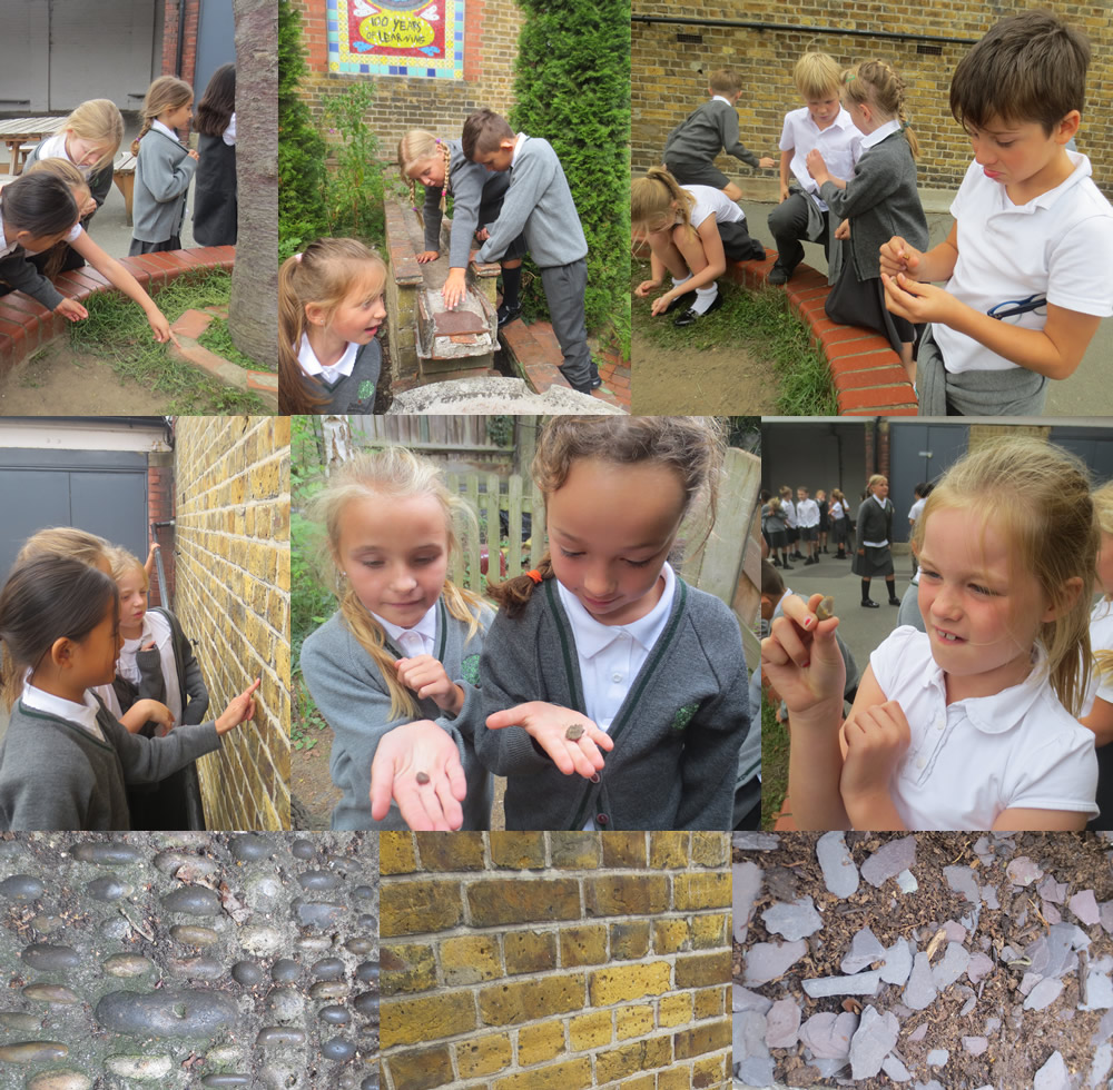 We investigated rocks and man made materials around the school.