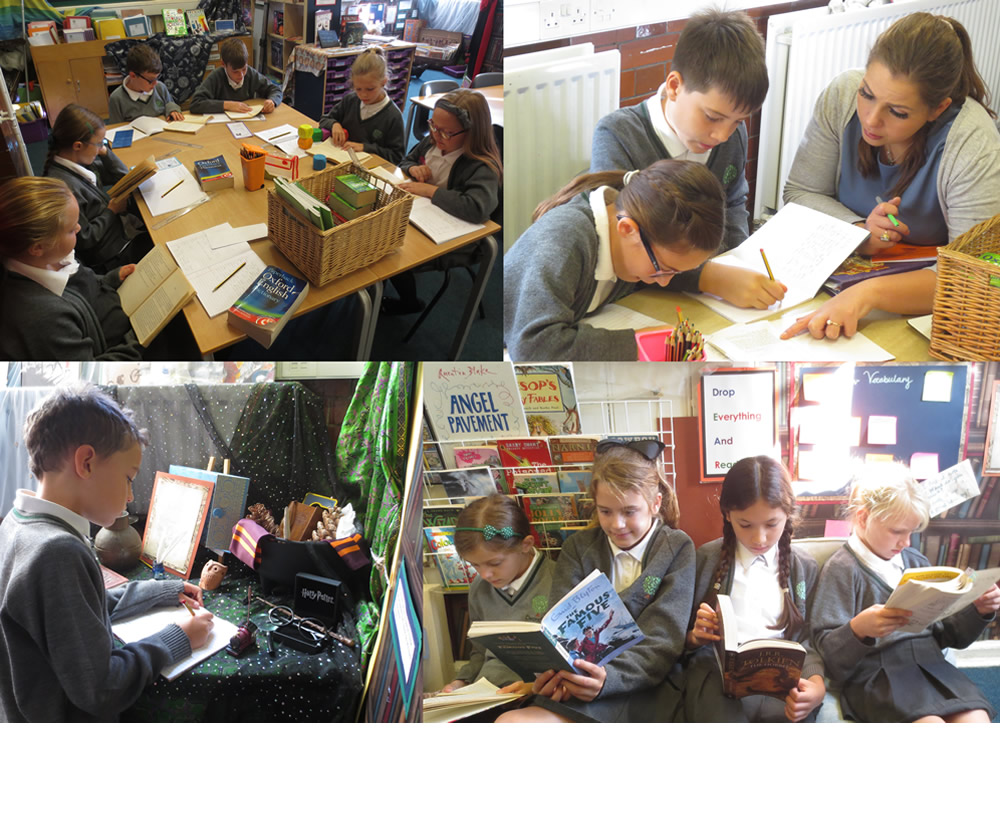 Independent, group and guided reading.