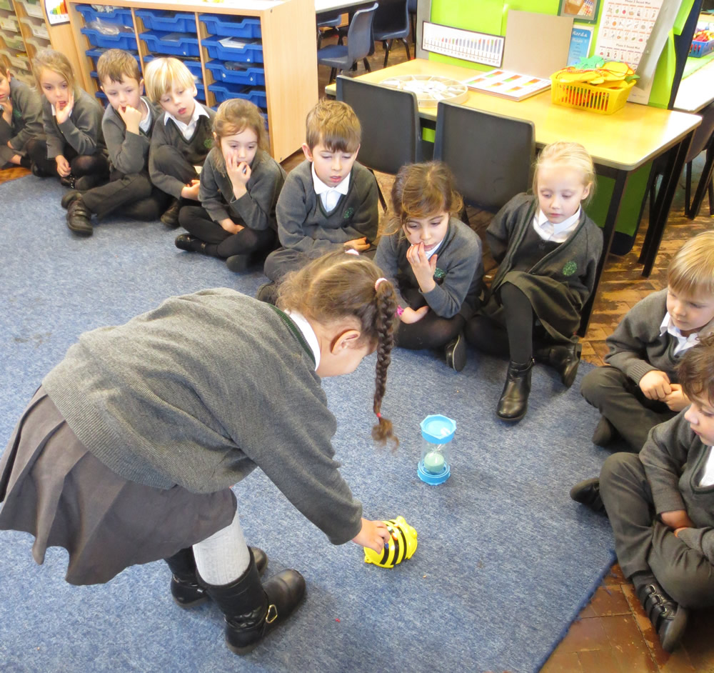 Programming the Beebots.