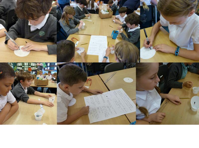 Year 5 use chromatography to investigate ink from different pens.